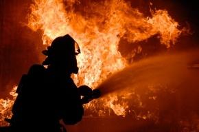 Капитально-ремонтируемое здание загорелось в Петергофе