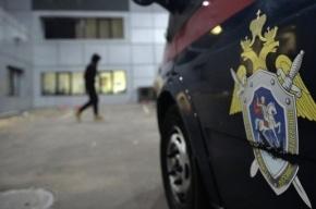 Подростки пытались вырезать семью из трех человек в Подмосковье