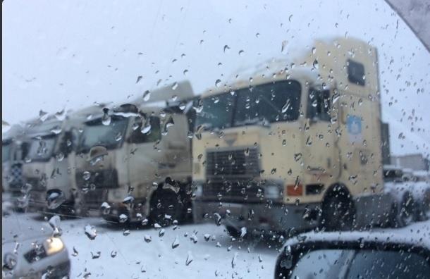 Полиция заблокировала колонну дальнобойщиков из Петербурга в 140 км от Москвы