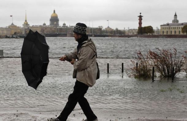 Ветер скоростью до 15 м/с ждут ночью в Петербурге