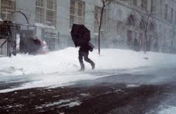 Усиление ветра ожидается в Петербурге