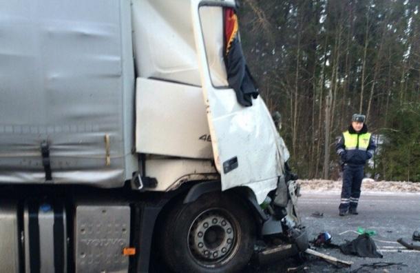 Причину крупной аварии в Ленобласти с автобусом назвали в ГИБДД