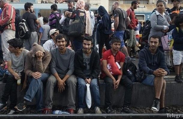 В Германии мигранты изнасиловали девочку из семьи российских немцев