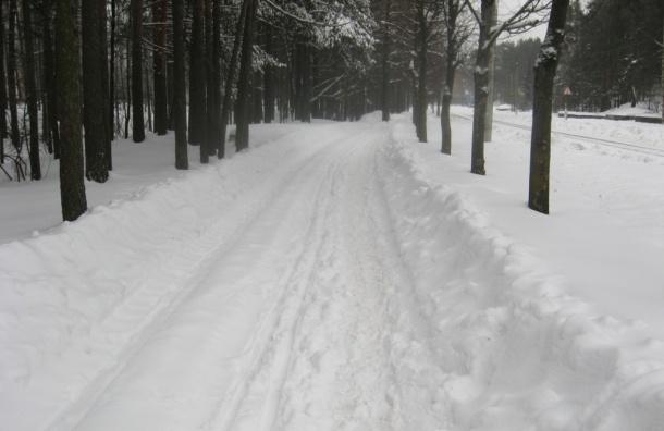 Тридцатиградусный мороз ждут ночью в Ленинградской области