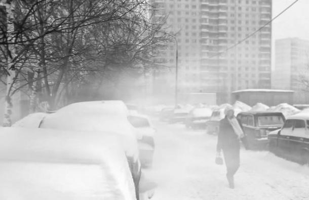 Петербург чистят от снега больше 500 машин