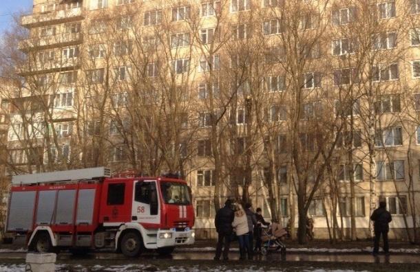 Пожарные спасают кота на Будапештской