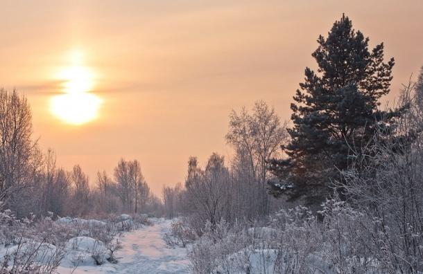 Рождественские морозы придут в Петербург