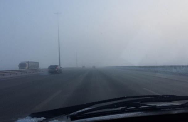 Причиной гари и смога на юго-западе Петербурга стал пожар на свалке
