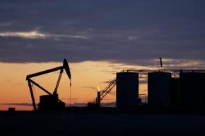 Американская нефтеперерабатывающая компания готова покупать нефть за доплату