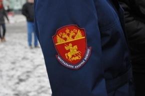 Казаки взяли под охрану 34 районных суда Москвы