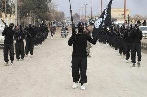Нидерланды начнут бомбить ИГИЛ в Сирии