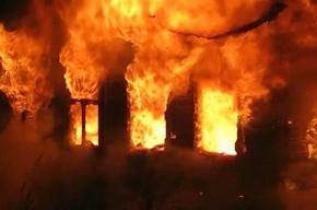 Поджигателей дома под Гатчиной, в котором погибли семь человек, поймали