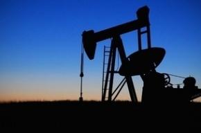 Мировые цены на нефть упали до показателей 2004 года