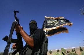 США поставили угрозу от России в один ряд с ИГИЛ