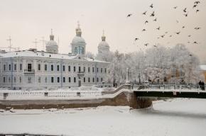 Колесов: Первая декада января стала одной из самых холодных в Петербурге