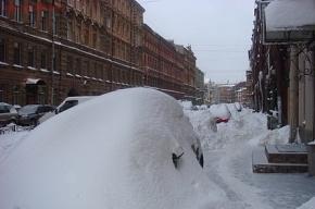 За минувшие два дня в Петербурге растопили рекордное количество снега