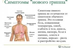 Две беременные девушки скончались от свиного гриппа в Петербурге