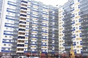 Приезжая выпала с 15-го этажа во время ремонта в новостройке в Кудрово