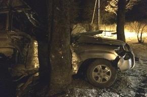 Водитель внедорожника погиб при столкновении с деревом в Ленобласти