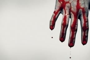 Количество убийств в Петербурге снизилось на 20%