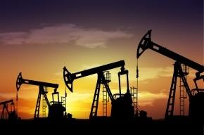 Нефть подешевела до 11-летнего минимума