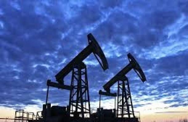 Эксперт: Объем добычи нефти в России может сократиться вдвое