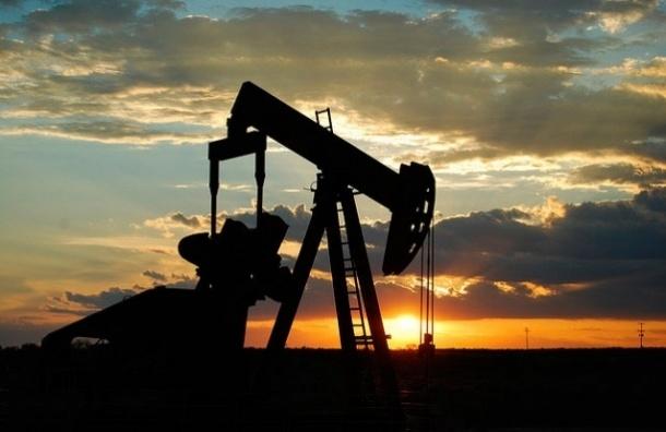 Нефть начала расти после резкого падения
