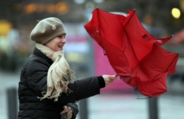 Ураганный ветер обещают в Петербурге днем