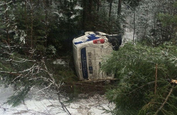 Машина одной из служб экспресс-доставки перевернулась в деревни Коваши