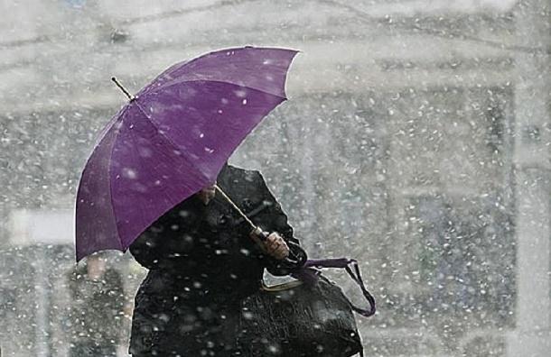 Мокрый снег обещают в Петербурге на выходных
