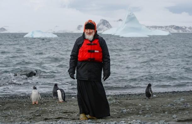 Патриарх Кирилл приехал к пингвинам в Антарктиду
