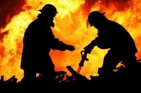 Пожарные спасли из горящего дома на Альпийском переулке 21 человека