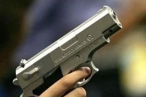 СМИ: в Мичигане сын выстрелил в голову своей матери
