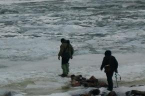 Спасатели сняли трех рыбаков с льдины в Финском заливе