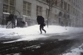 Петербург ждет 27 февраля сильный ветер и гололедица