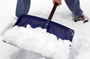 Почти 900 единиц техники будут чистить город в снегопад