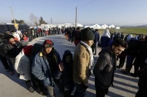 Македония строит вторую стену от мигрантов на границе Греции