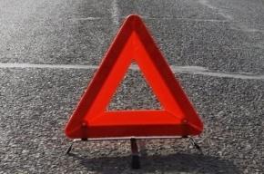 Двое человек погибли, еще двое пострадали в ДТП на Приозерском шоссе