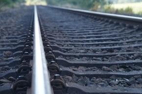 Товарный поезд насмерть сбил пожилую женщину в Белоострове