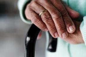Тело пенсионерки из Петербурга нашли на «Дороге Жизни»
