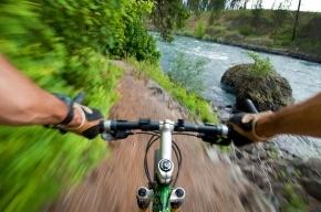 Велосипедиста, который сбил пенсионерку в Петербурге будут судить