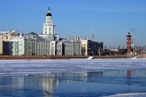 Метеорологи заявили, что зима для Петербурга закончилась