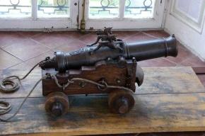 Подросток лишился зрения после выстрела пушки 19 века в Ленобласти