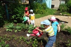 Детям могут разрешить работать