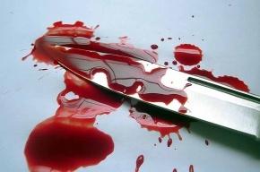 Посетителя кафе на проспекте Ветеранов ударили в живот ножом