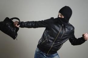 Разбойник хотел ограбить петербурженку с помощью деревянной лопатки