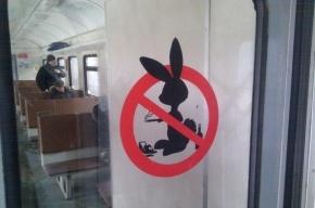 С начала февраля проверяющие поймали 135 «зайцев» в электричках Петербурга