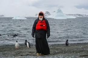 Патриарх Кирилл рассказал о ЧП, случившимся по пути в Антарктиду