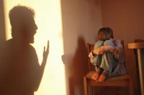 Пятиклассника из лицея в Кировском районе изнасиловал любовник матери