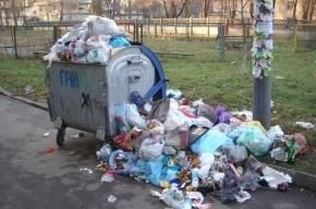 Налог на мусор начнут брать в России с 2017 года